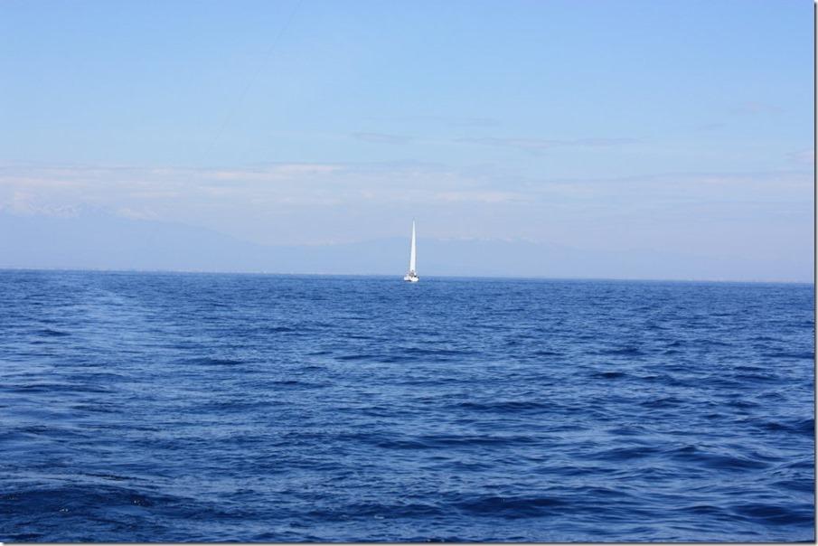 5 Une heur de plus à se traîner à 1.5 noeuds, Jean-Paul fait demi-tour et rentre à St Cyp